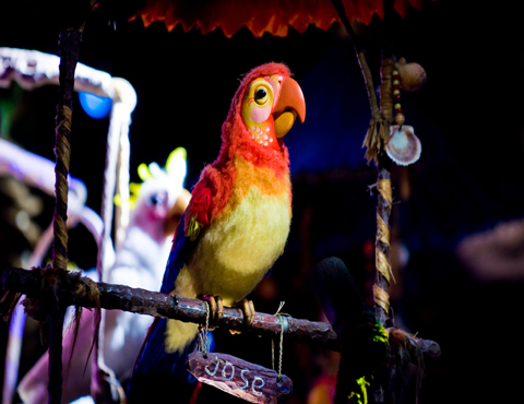 walt disney s enchanted tiki room magic kingdom rh touringplans com Animation Enchanted Tiki Room Tiki Room Iago