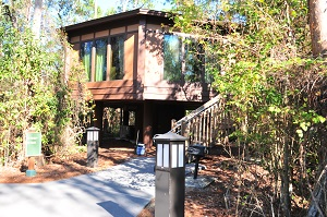 Room 7020: This Treehouse Is Located Near The Resortu0027s Boat Dock.